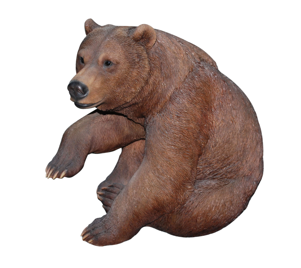 Bear standing png. Transparent images all