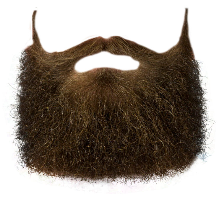 Beard hair png. Transparent free images only