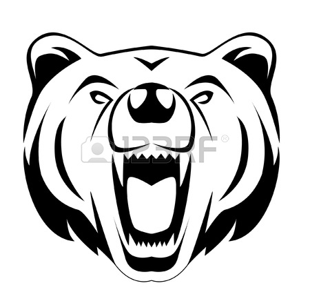 Bears Head Transparent Png Clipart Free Download Ya Webdesign