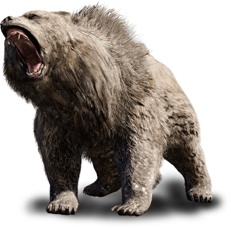 Beast vector angry bear. Pin by pale as