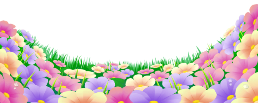 Beautiful backgrounds png. Download grass with flowers