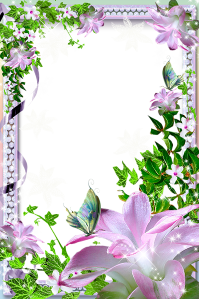Beautiful backgrounds png. Transparent photo frame with