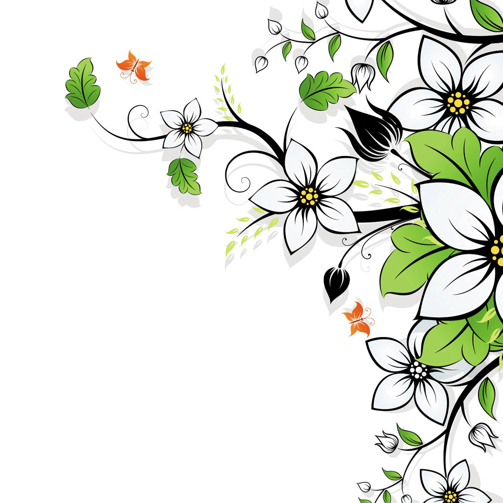Beautiful backgrounds png. Flower wallpaper flowers background