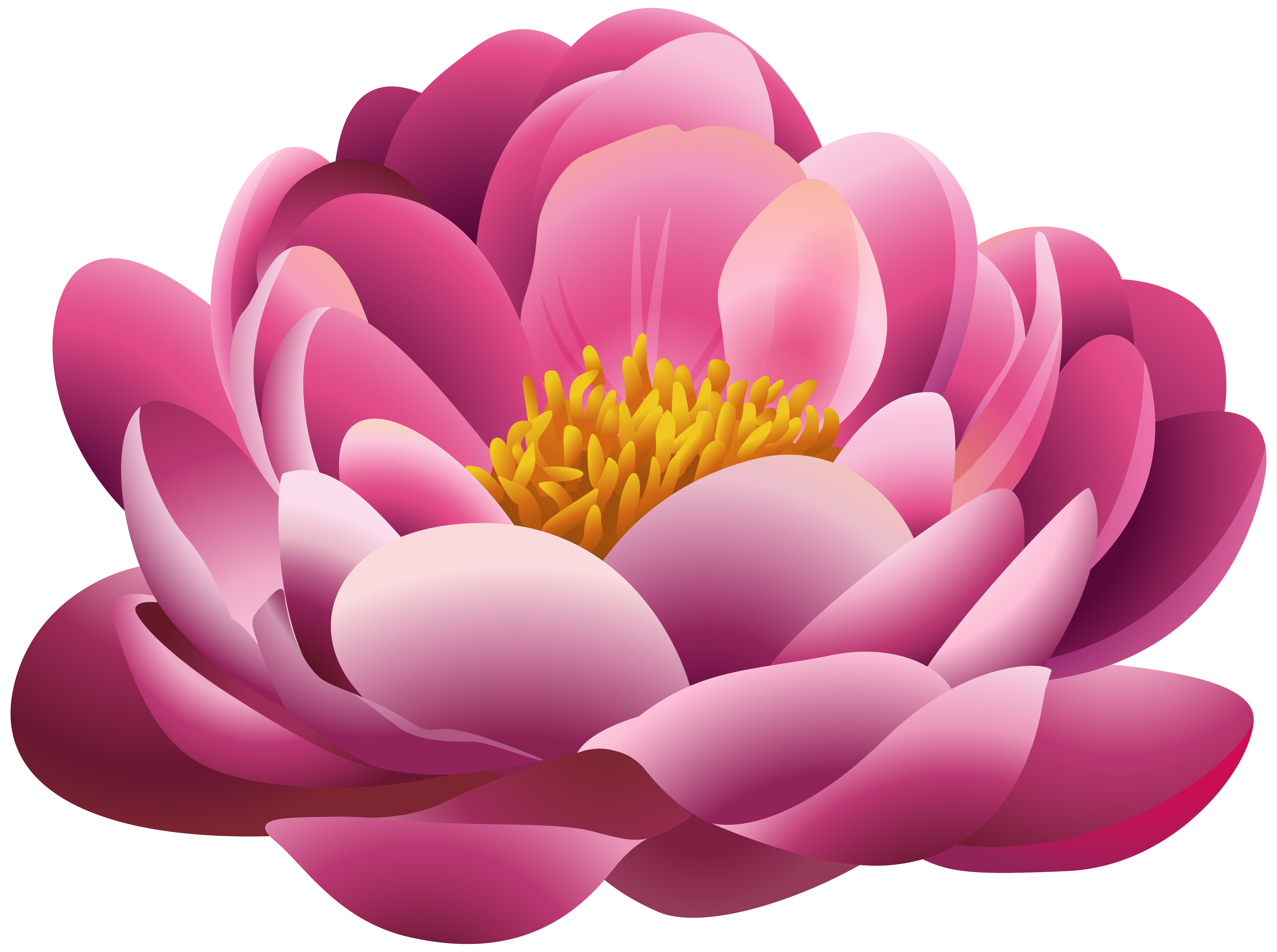 Beautiful flower png. Pink clipart image gallery