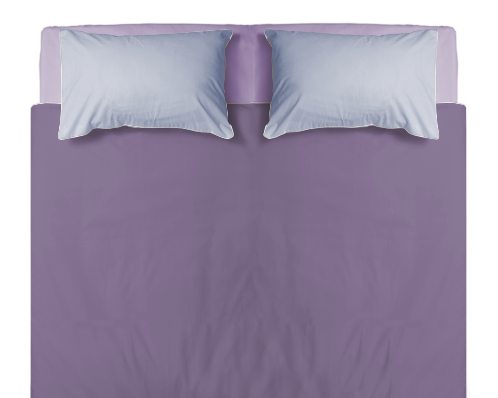 bed top view png