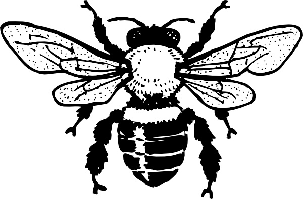 Bee clip art honey bee. Free vector in open