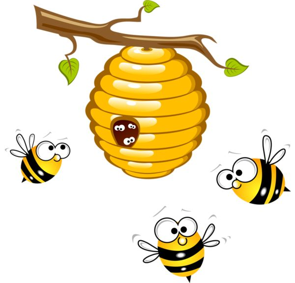Bee clip art insect. Clipart pictures of honey