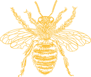 Bee clip art silhouette. Free cliparts download yellow