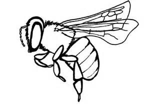 Bee clip art simple. Black and white of