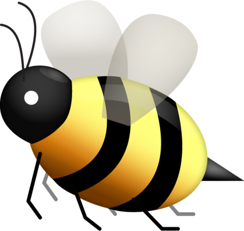 honey bee illustration png