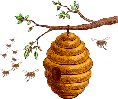 Bee hive png. The power of propolis