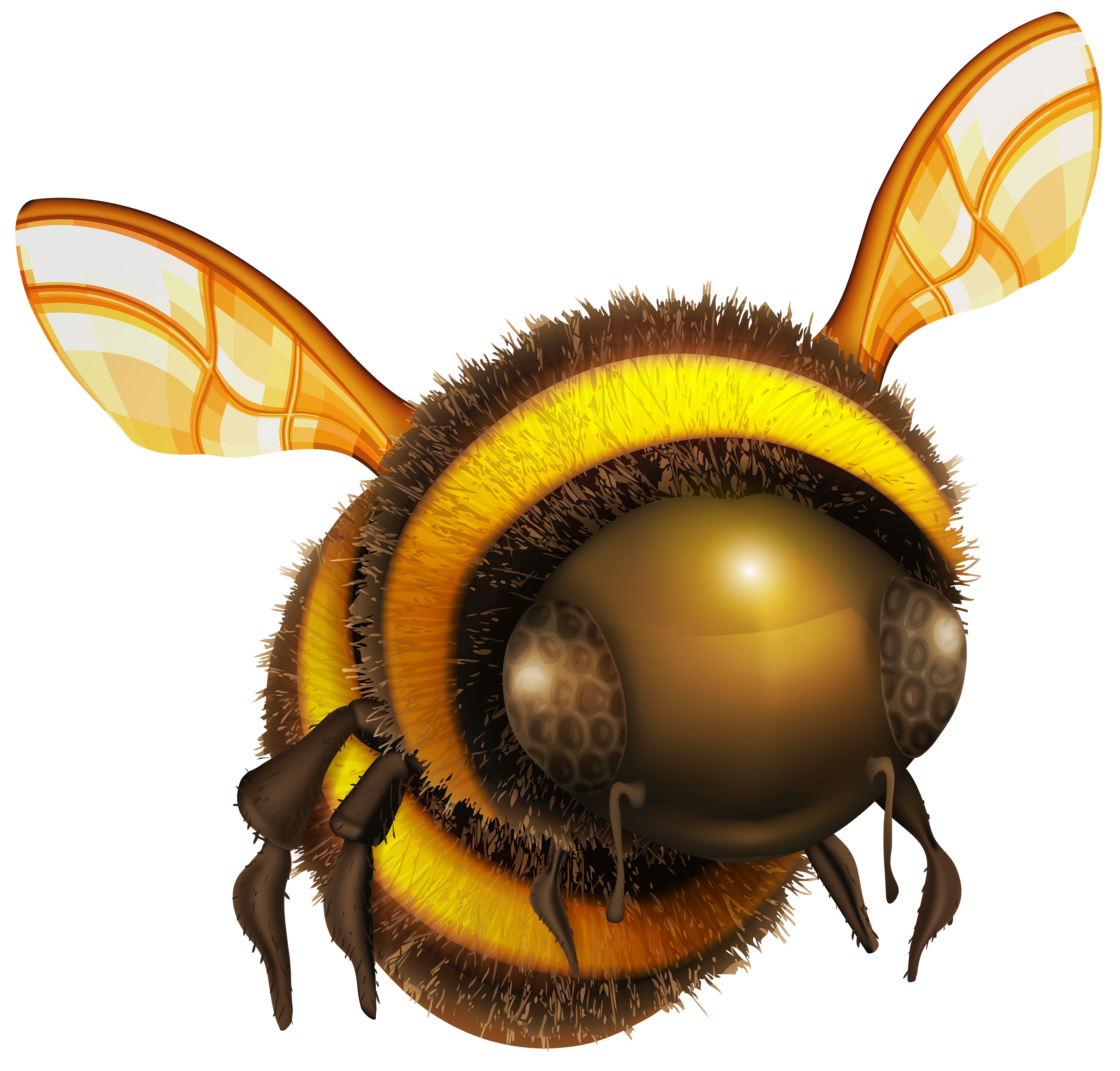 Png art best web. Bee clip image library stock
