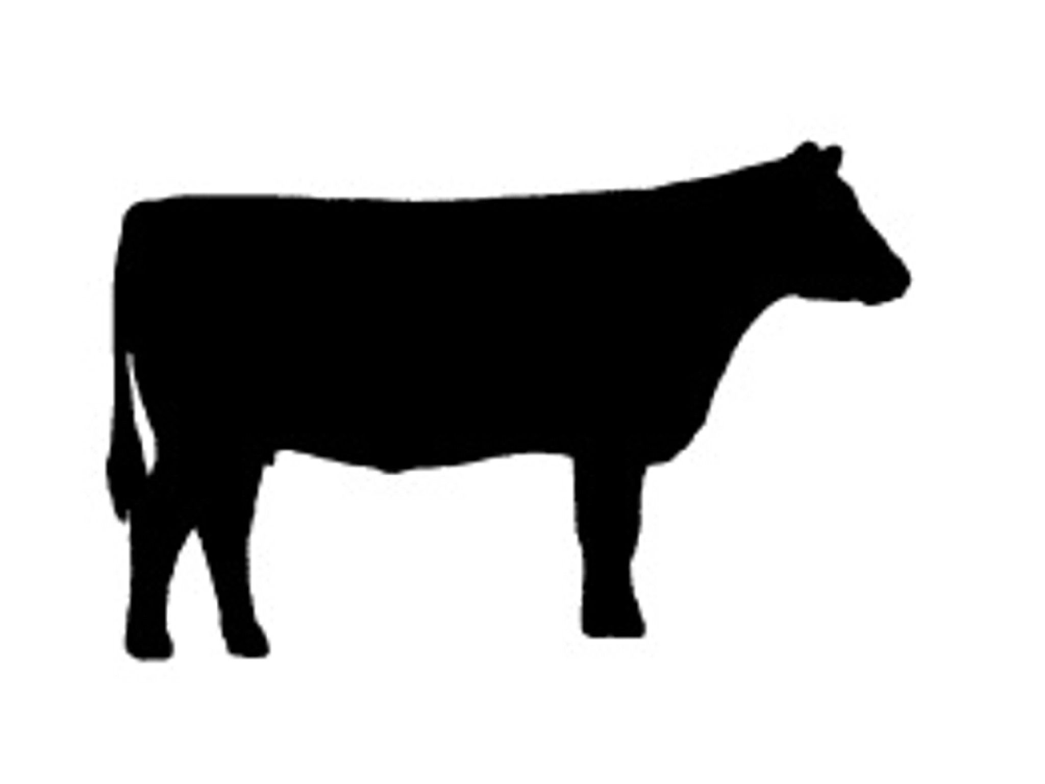 Steering clipart silhouette. Beef cow at getdrawings png download