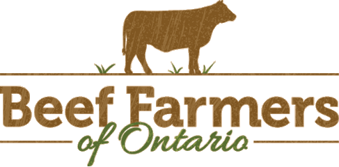 Cattle vector wagyu. Beef farmers of ontario