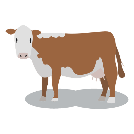 Beef vector flat. Cow meat animal transparent
