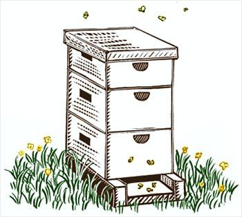 Beehive clipart bee hive. Free black and white