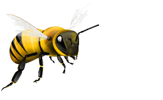 Bees clipart transparent background. Bee png image