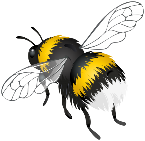 Bees transparent flying. Bee png clipart animal
