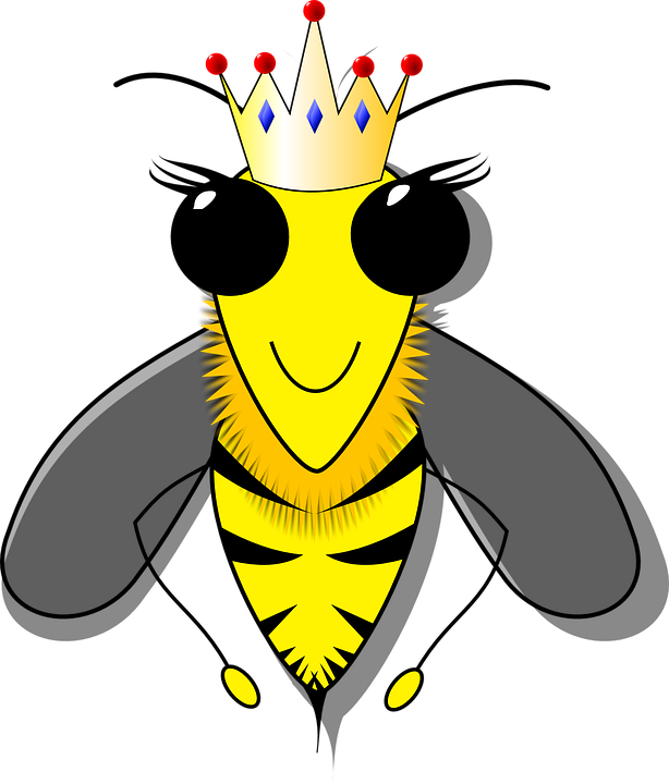 Bees transparent queen. Music medley royal confetti