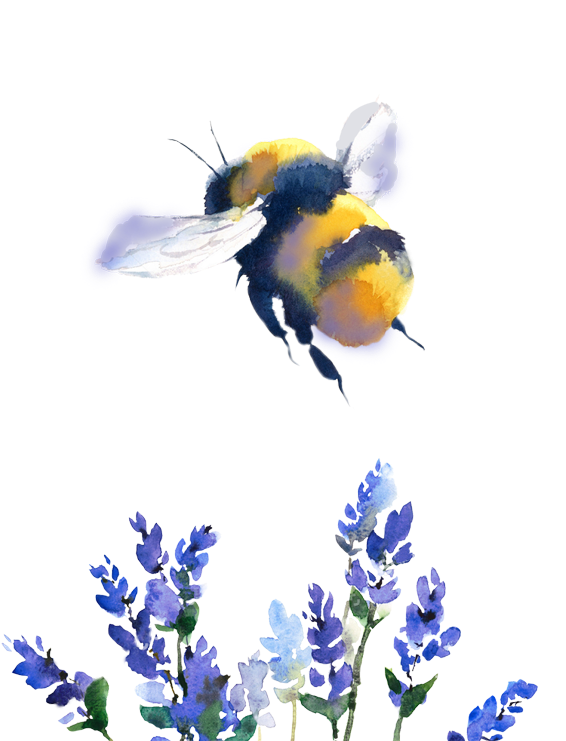 Bees transparent watercolor. Download hd pages bumble