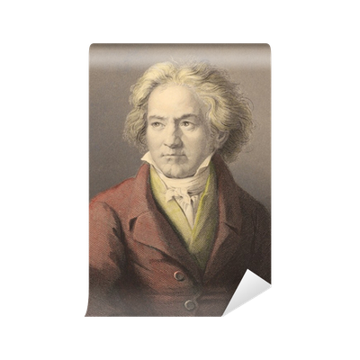 Beethoven drawing abstract. Wall mural pixers we