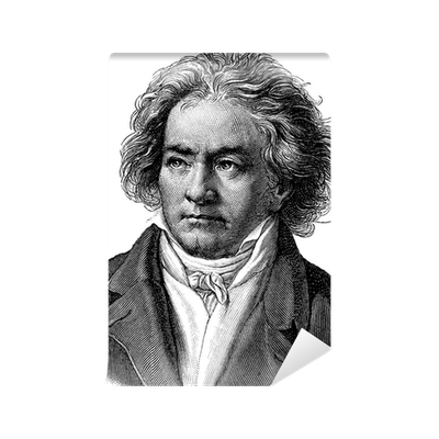 Beethoven drawing print. Wall mural pixers we