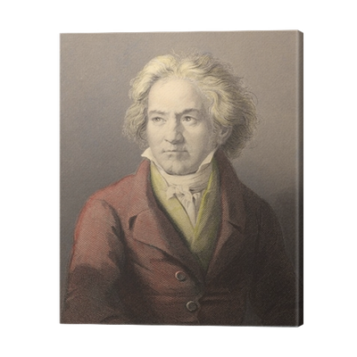 Beethoven drawing print. Canvas pixers we live