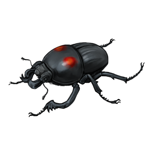 Beetle transparent shiny gold. Species updated lioden hgwyipng