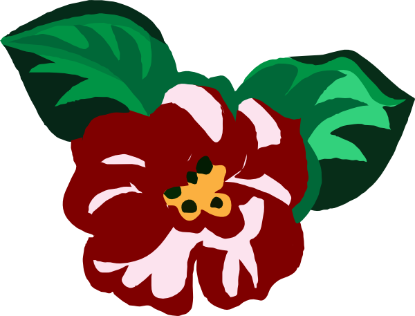 Begonia drawing scarlet begonias. Clip art at clker