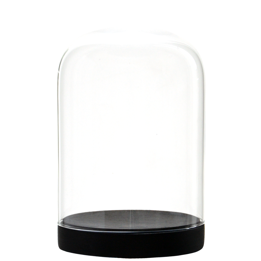 glass dome png
