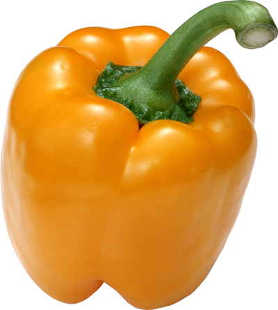 Bell photo png no background. Pepper gallery isolated stock