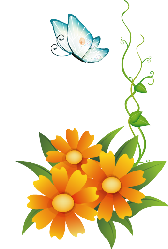 Clipart flowers and butterflies png. Res orange with butterfly