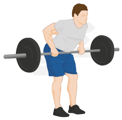 Bending barbell png. Bent over row exercise