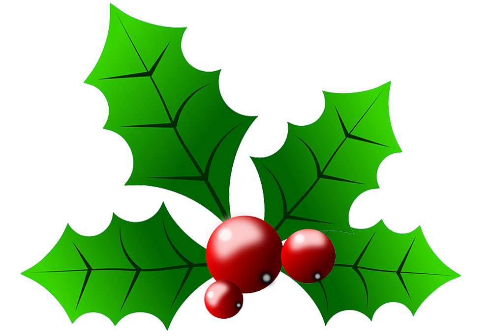 Holly clipart png. Free berry download clip