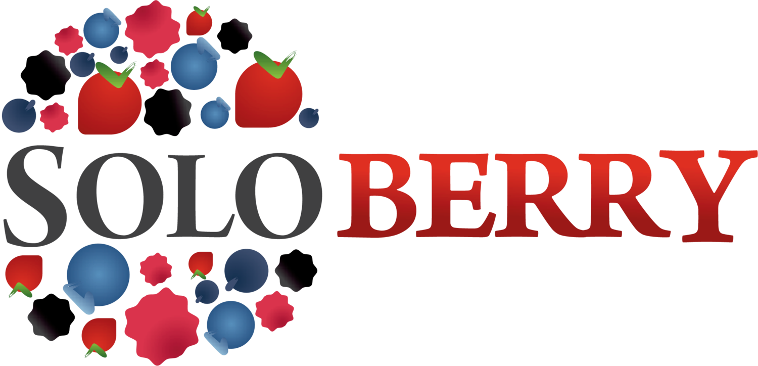 Berry vector red indian. Soloberry about products our