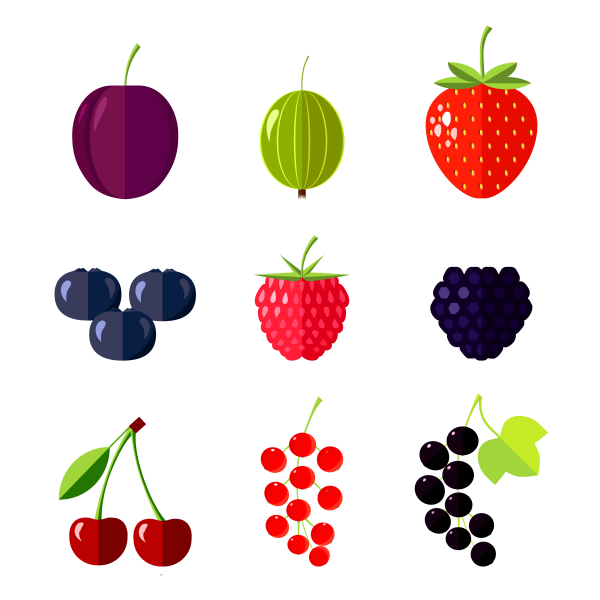 Berries icons. Flat vector illustration