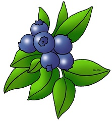 Berry clipart berry bush. Free blueberry