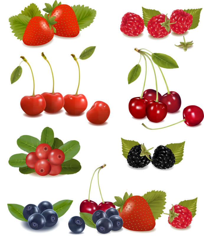 Berry vector fresh. Fruit and berries png