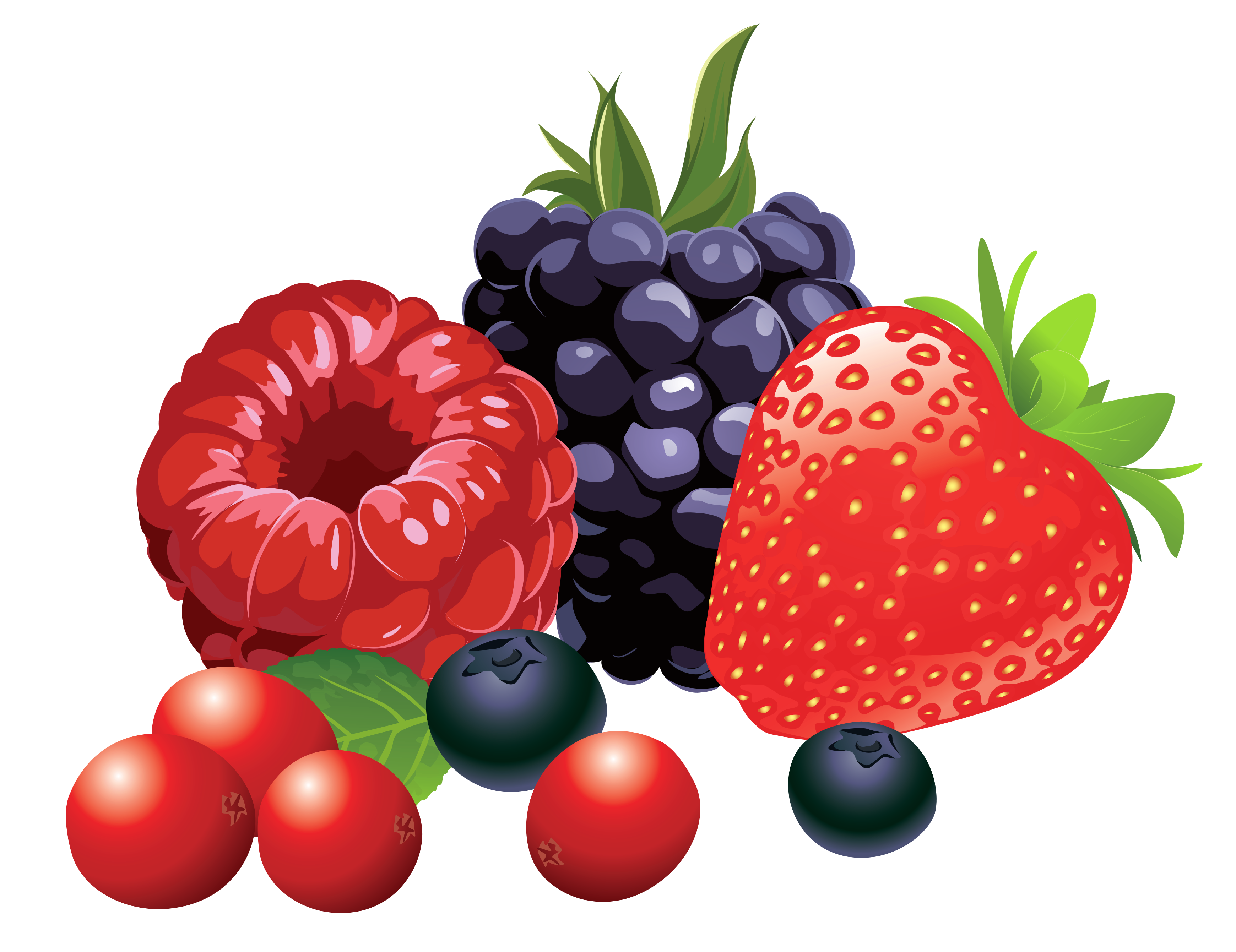 Berry vector mixed. Collection of free berries