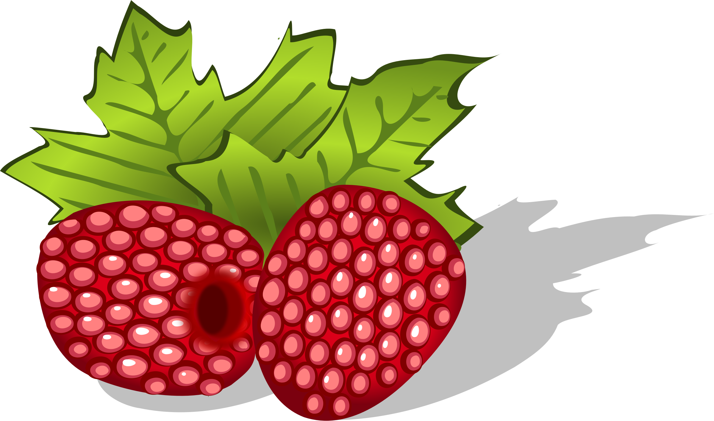 Berry vector red indian. Collection of free berries