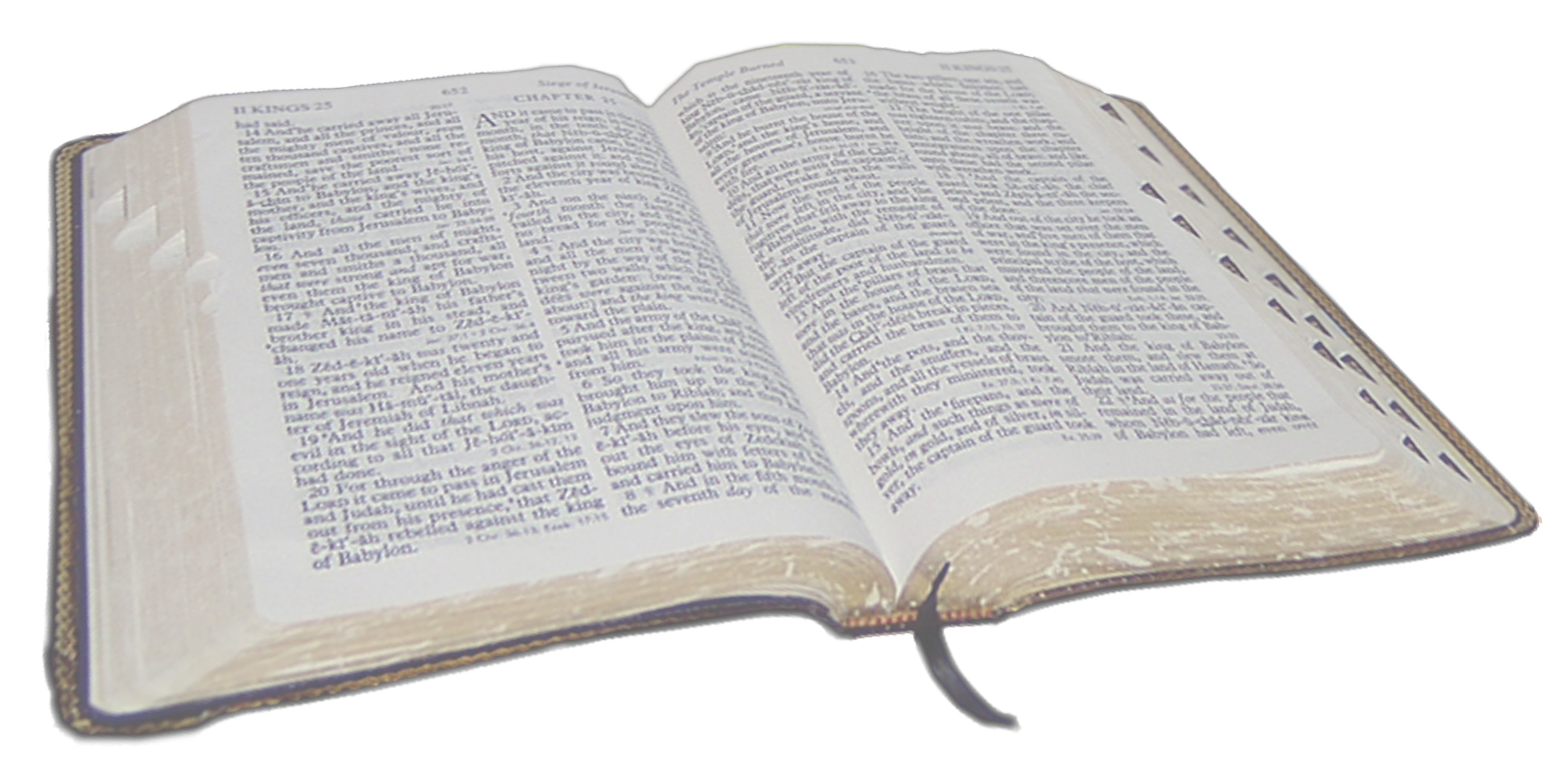reading transparent bible