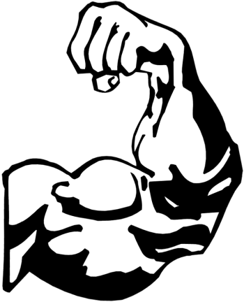 Biceps drawing clipart. Bicep transparent png stickpng