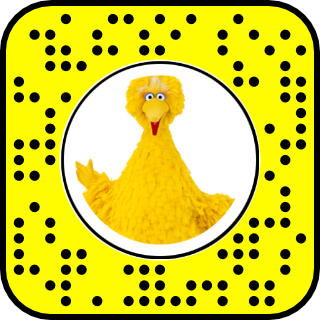Big bird face png. Dead with all around