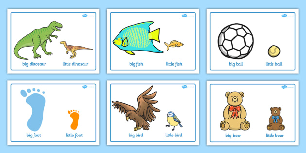 And comparison display posters. Big clipart big small jpg library download