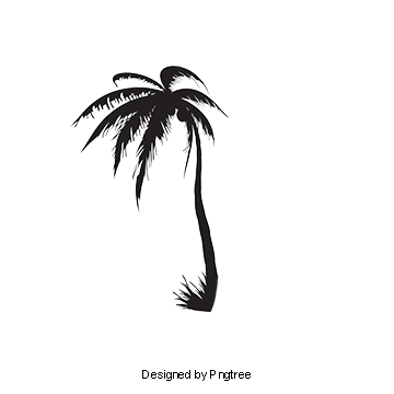Palm tree watercolor png. Images download resources with