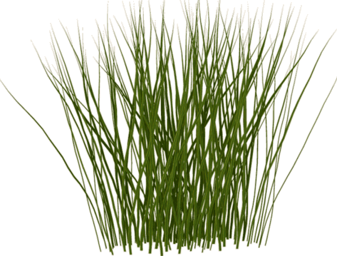 Grass texture png. Alpha brilliant making textures