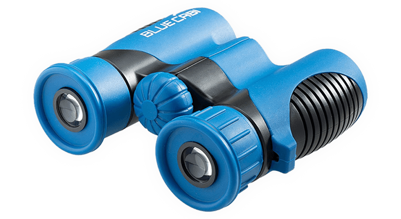 Drawing compound binocular. Best affordable binoculars for