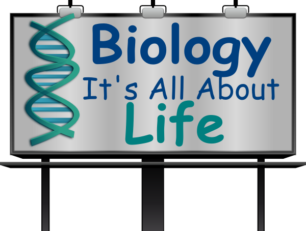 Biology clipart biology teacher. Clip art at clker