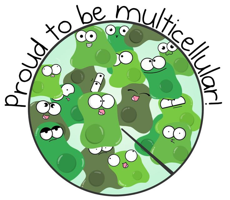Biology clipart general biology. Best science pictures images
