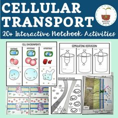 Biology clipart pcr. And gel electrophoresis a